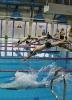 Mistrzostwa powiatu w pływaniu_7